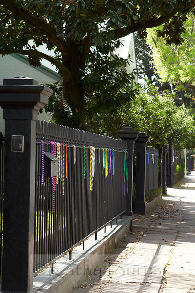 New Orleans Mardi Gras necklaces draped on an iron fence