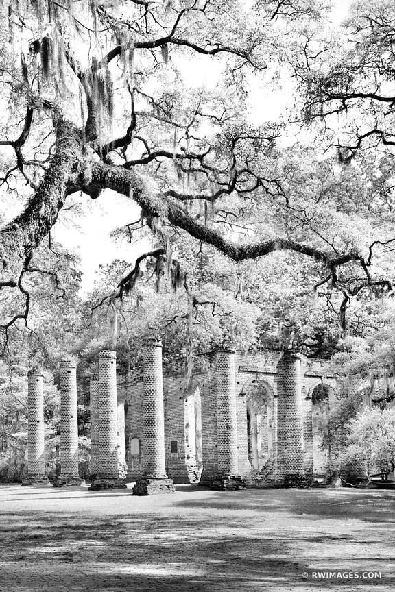 OLD SHELDON CHURCH RUINS NEAR BEAUFORT SOUTH CAROLINA BLACK AND WHITE VERTICAL