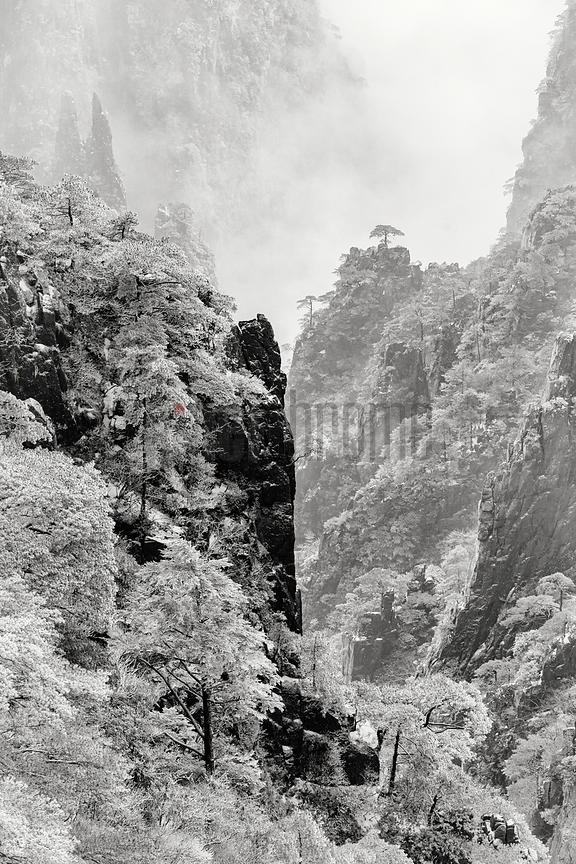 Elevated View of the Grand Canyon of the Huangshan Mountains