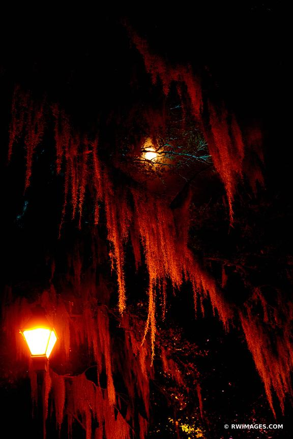 STREET LAMP SPANISH MOSS FULL MOON NIGHT FORSYTH PARK SAVANNAH GEORGIA