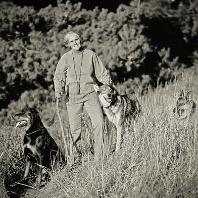 Black and white portrait of a woman with her pet wolf, German Shepherd, and Rottweiler on a grassy hillside