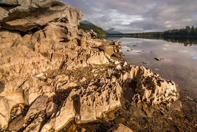 Karst formations on shore of Anutz Lake on northern Vancouver Island.