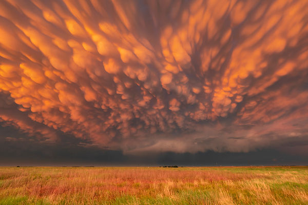 STORM CHASING ON THE GREAT PLAINS, 6-17 JUNE, 2022 TOUR 1—FULL