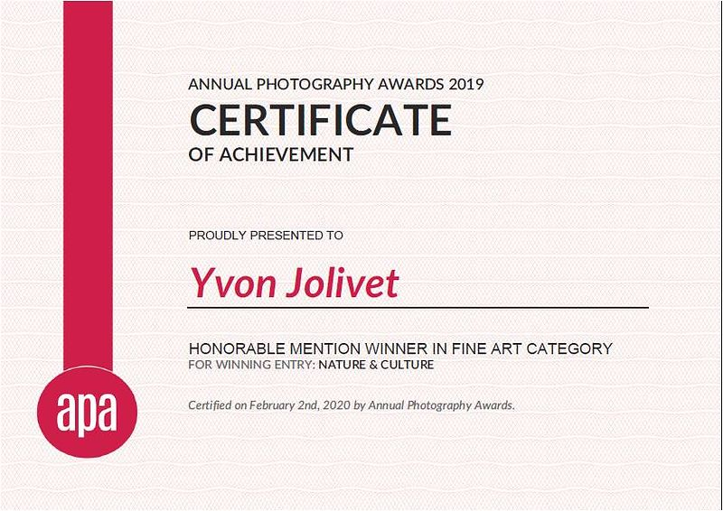 APA - Honorable mention