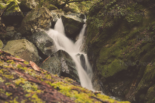 Waterfall cascading over rocks, Sugarloaf Ridge State Park, Sonoma County, California, USA.