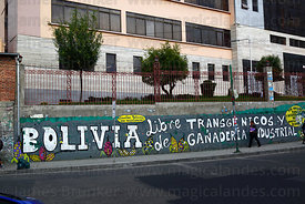 """Bolivia Free of Transgenic Crops and Industrial Cattle Farming"" protest mural next to main UMSA University, La Paz, Bolivia"