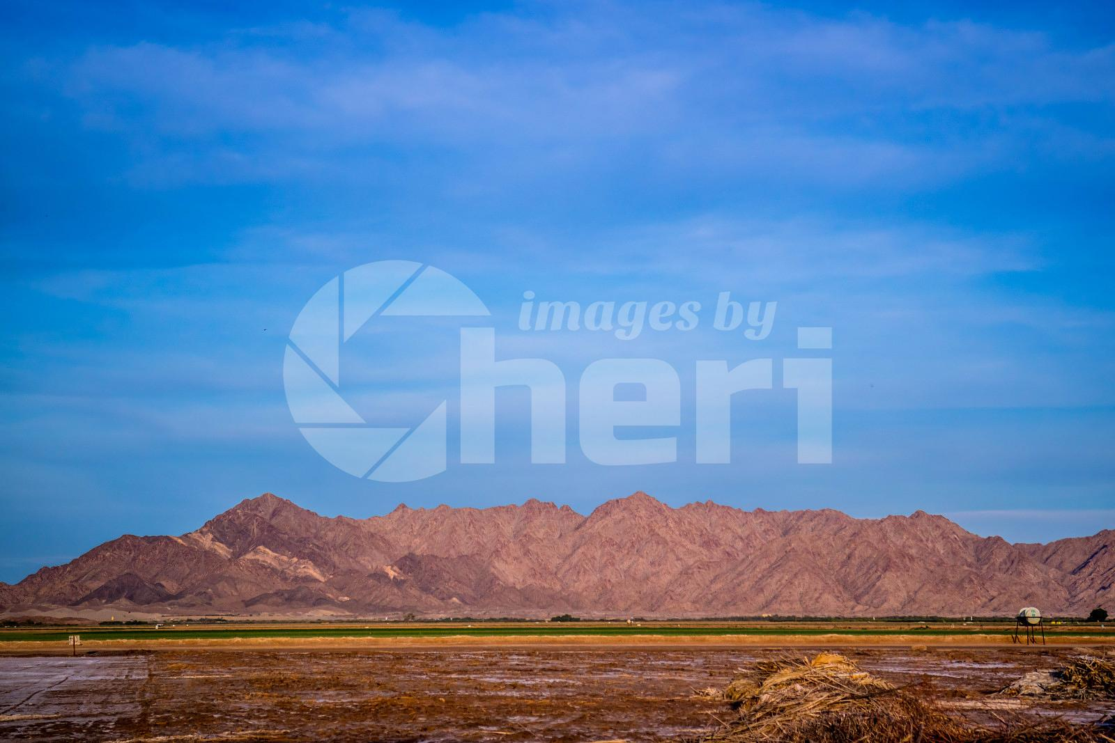 Gila Mountains in Yuma at Southwestern Arizona