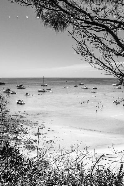 'South Beach Summer' b&w