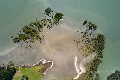 Top View of a Piece of Beach That Runs Into the Water in Northland, New Zealand. the Turquoise Water Is at the Same Time So C...