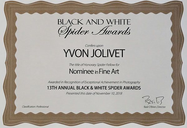 Black & White Spider Awards - Nominee