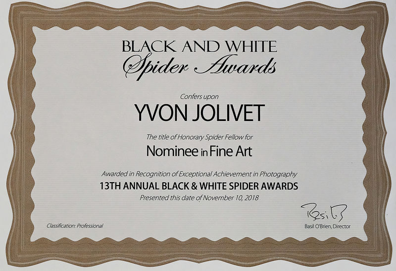 Black and White Spider Awards 2018