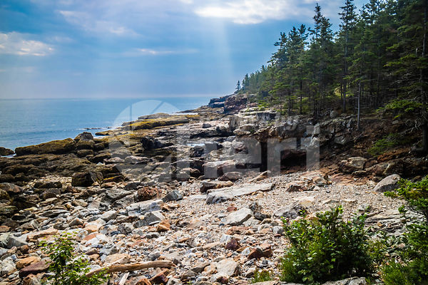 The Great Head Trail in Acadia National Park, Maine