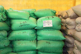 Bags of quinoa awaiting distribution in processing plant, Salinas de Garci Mendoza, Bolivia