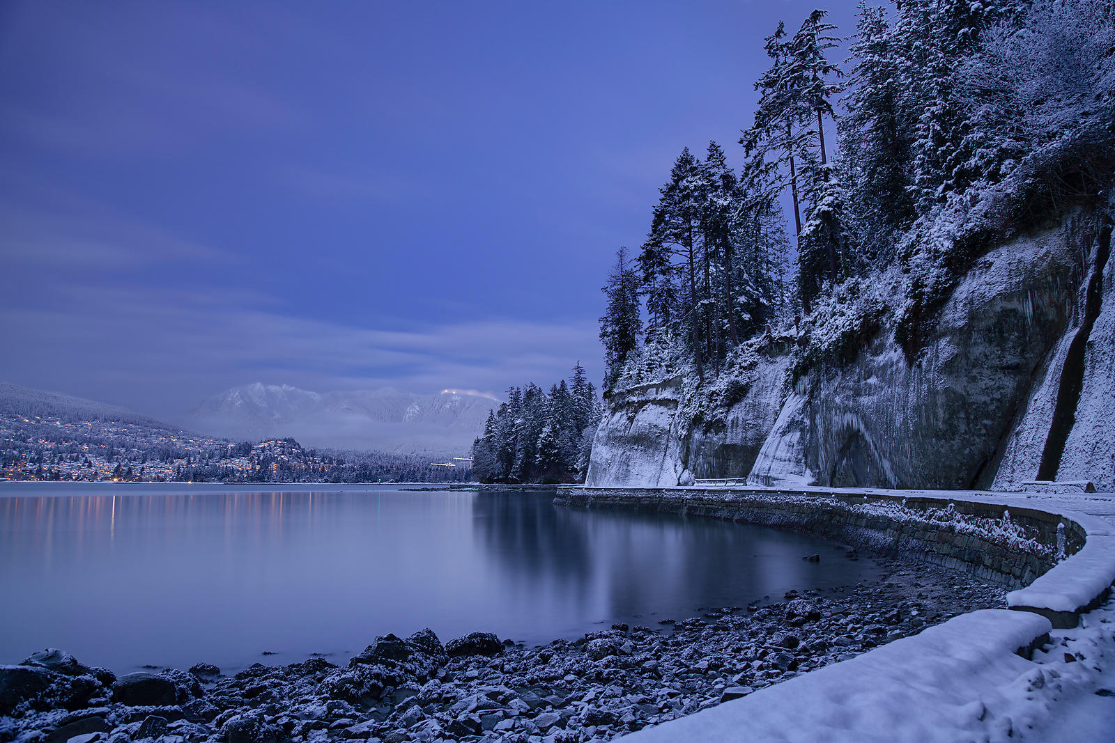 Winter Scene in Stanley Park