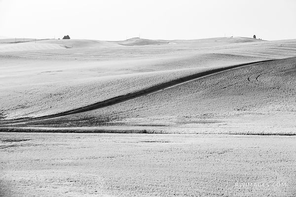PALOUSE FARMLAND RURAL EASTERN BLACK AND WHITE LANDSCAPE