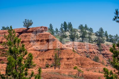 A naturally formed red sandstone rocks in Devils Tower National Monument, Wyoming
