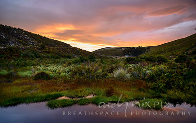 Fynbos river valley at sunrise