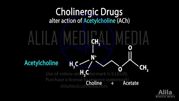 Cholinergic drugs NARRATED animation