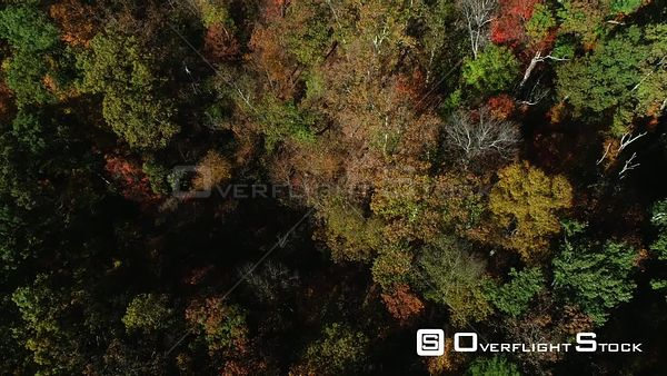 Rural Kentucky in the Autumn Drone Flight