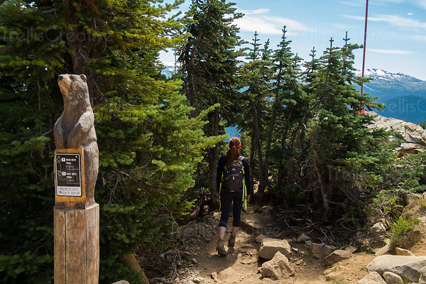 Hiker passing trail marker on trail, Blackcomb Mountain, Whistler, Canada.