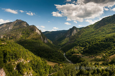 Amazing Landscape of the Tara River Gorge in Summer Near the Bridge Montenegro
