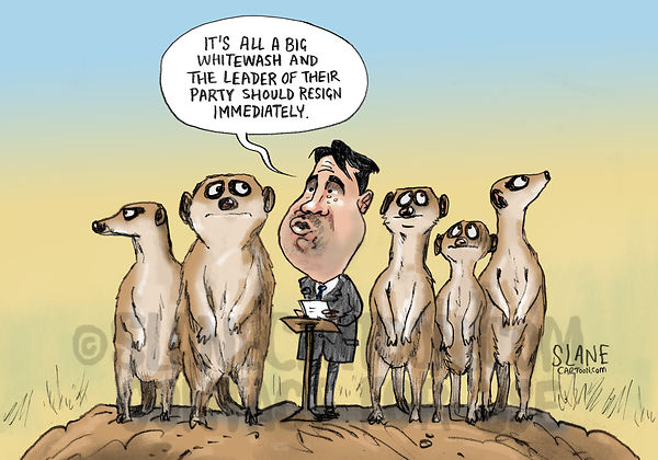 National Party Meerkats
