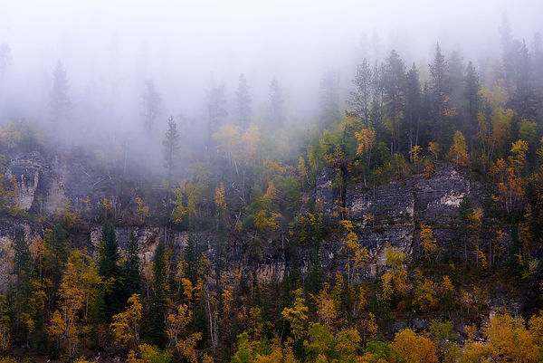 Spearfish_Canyon_Fall_Foliage