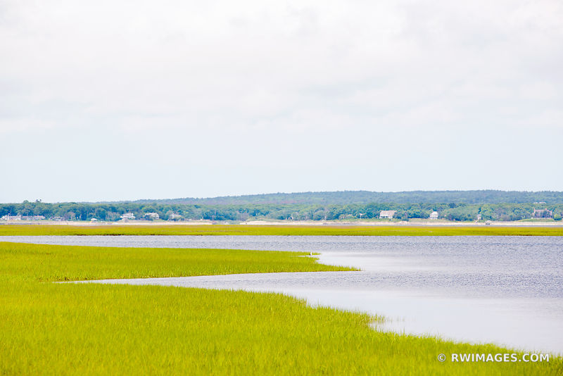 SALTMARSH HAMPTON BAYS LONG ISLAND NEW YORK