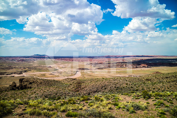 Desert landscape of the beautiful Petrified Forest National Park, Arizona