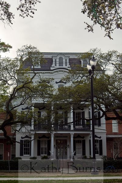 Architecture in New Orleans