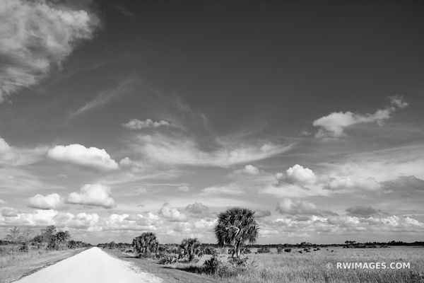 UPPER WAGONWHEEL ROAD BIG CYPRESS NATIONAL PRESERVE EVERGLADES FLORIDA BACKROADS BLACK AND WHITE