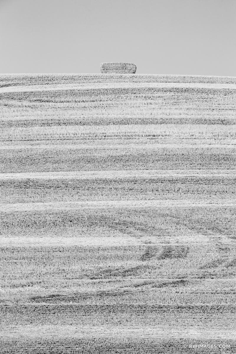 HAY BALE SUMMER HARVEST PALOUSE WASHINGTON BLACK AND WHITE VERTICAL
