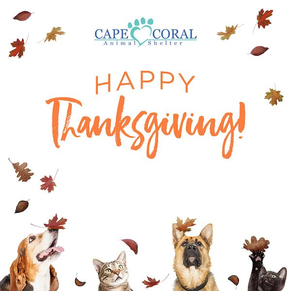 Cape_Coral_Thanksgiving