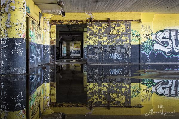 Marine_Terminal_Yellow_Black_Door_Reflection