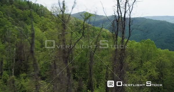 Close fly through trees looking over mountain range, North Carolina, USA