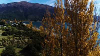 Lake_Hawea_071901