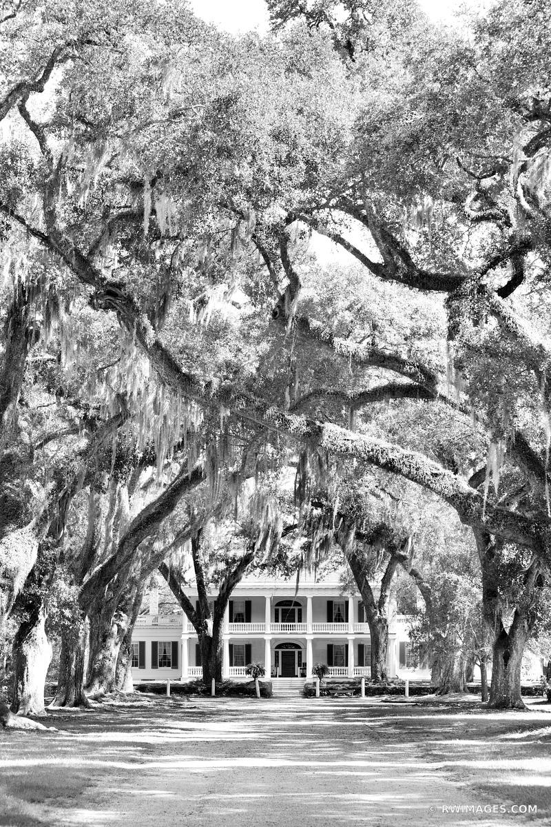 ROSEDOWN PLANTATION AND GARDENS ST. FRANCISVILLE LOUISIANA BLACK AND WHITE VERTICAL