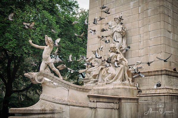 NYC_Fountain_Pigeons_in_Flight