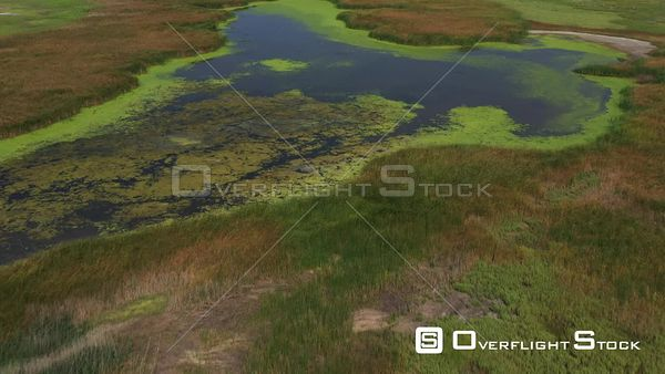 Flying over a Pond in a Swamp, Lincoln, Nebraska, USA