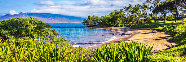 Maui Hawaii Ulua Beach Wailea Makena Panorama Photo