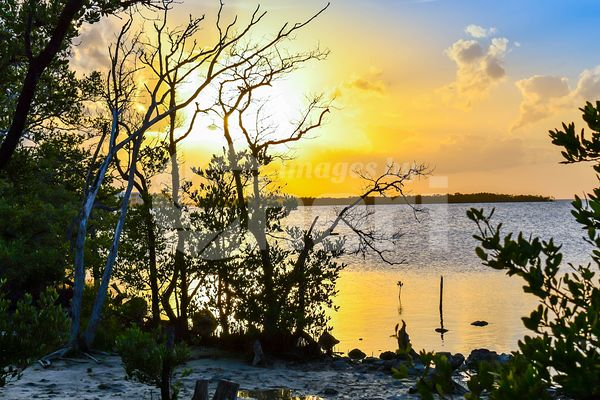 Beautiful sunset over the sea with clear sky in Key Largo, Florida