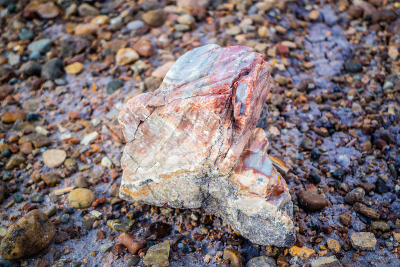Quartz Crystal in Petrified Forest National Park, Arizona