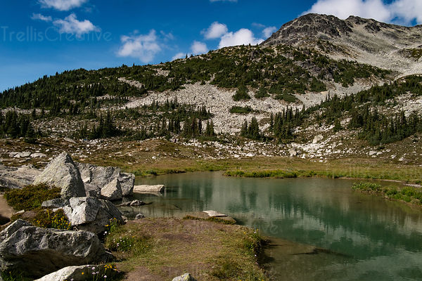 Reflections in a mountain lake, Blackcomb Mountain, Whistler, Canada.
