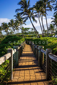 Maui Mokapu Beach Park Wailea Beach Path Photo
