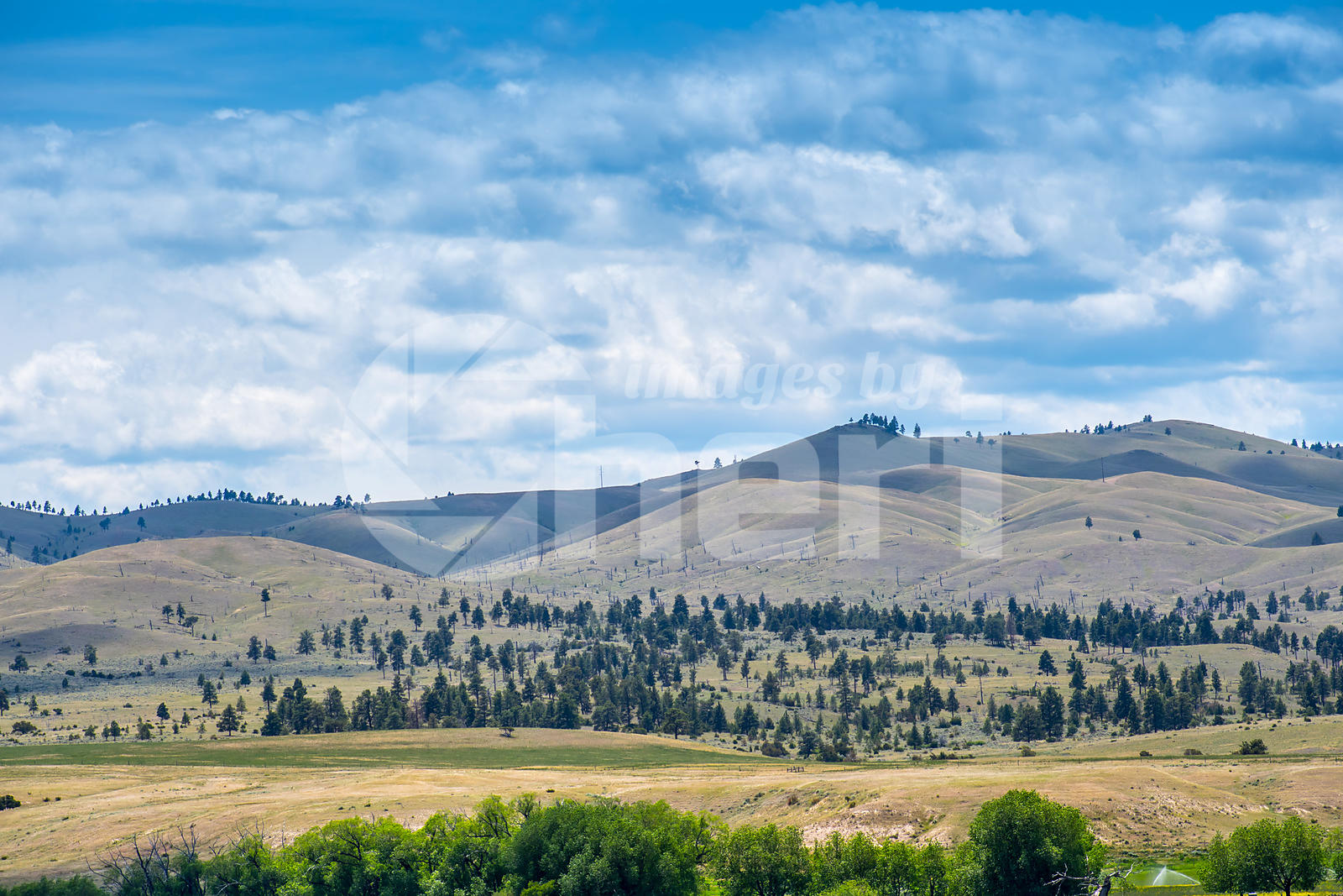 An overlooking landscape of Gates of the Mountain in Helena National Forest, Montana