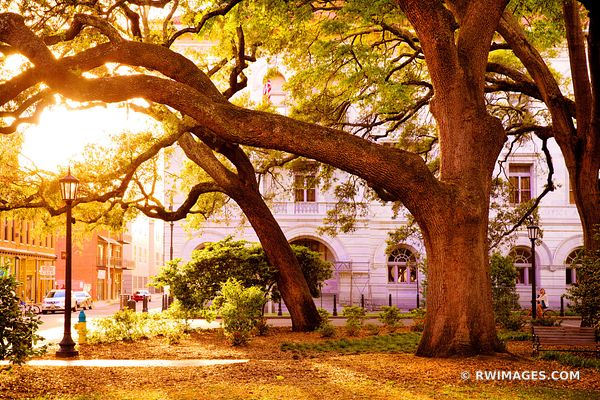 WRIGHT SQUARE SAVANNAH GEORGIA