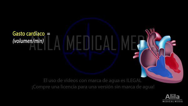 Videos en espanol