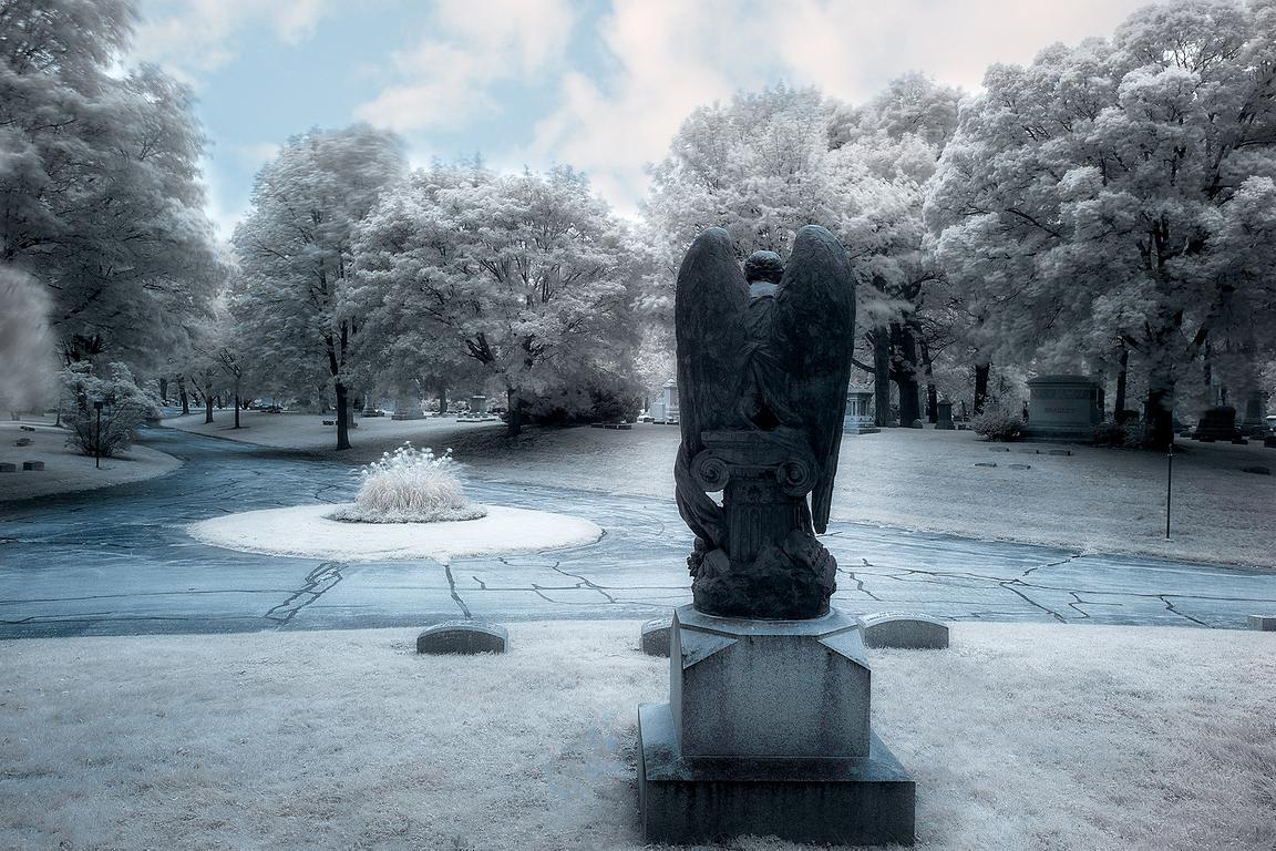 forest-home-cemetery_back-of-angel_INFRARED_IMG_0794