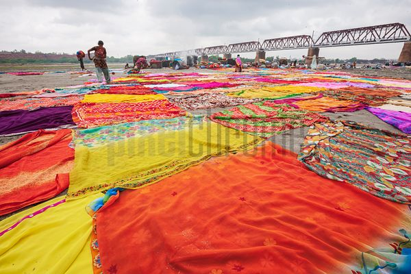 Sari Laundry in the Yamuna River Floodplain