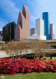 City Skyline and Spring Azaleas